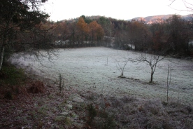 Winter 16-17