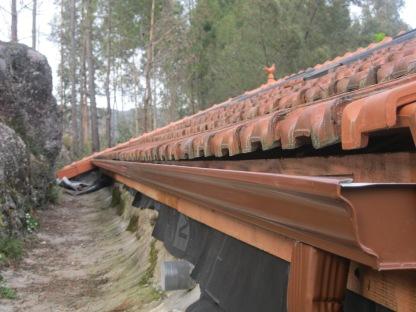 Pasen '16: dakgootjes en dakduif
